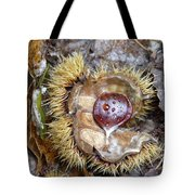 Chestnut Tote Bag