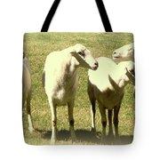 Cheviot Sheep Tote Bag