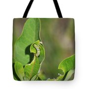 Chewing My Way To Adulthood Tote Bag