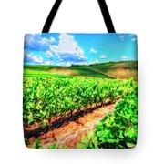Chianti Vineyard In Tuscany Tote Bag