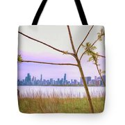 Chicago Skyline - The View From Montrose Point Tote Bag