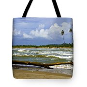 Chichirivihe Bay Tote Bag