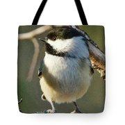 Chickadee Enjoying The Sun Tote Bag