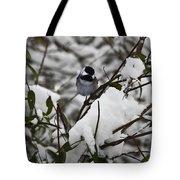 Chickadee On The Jasmine Tote Bag