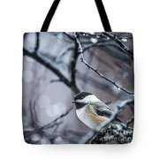 Chickadee Rain Tote Bag