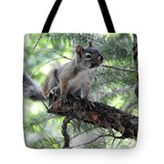 Chickaree On The Tree Tote Bag