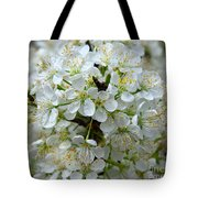 Chickasaw Plum Blooms Tote Bag