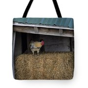 Chicken In Barn Tote Bag