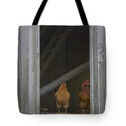 Chicken Outlook Tote Bag