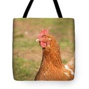 Chicken Strutting Tote Bag