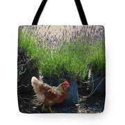 Chicken With Lavender  Tote Bag