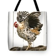 Chickens In Bird In Hand 2 Tote Bag