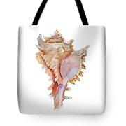 Chicoreus Ramosus Shell Tote Bag by Amy Kirkpatrick
