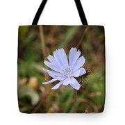 Chicory Blue Tote Bag