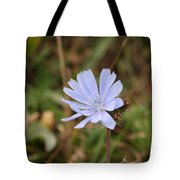 Chicory Blue Tote Bag