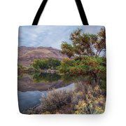 Chief Timothy Reflections Tote Bag