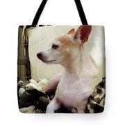 Chihuahua Chiqui Portrait 3 Tote Bag
