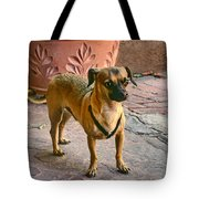 Chihuahua - Dogs Tote Bag