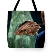 Child Watching Spotted Ray Fish Tote Bag