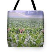 Children Of The Corn Tote Bag