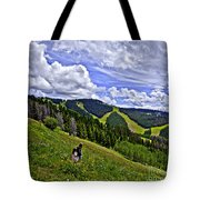 Children On Vail Mountain Tote Bag
