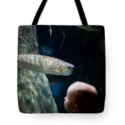 Children Watch Silver Arowana Fish Tote Bag