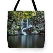 Child's Park Waterfall 2 Tote Bag