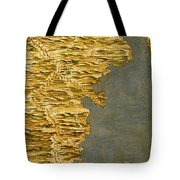 Chile And Argentina With The Strait Of Magellan Tote Bag