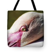 Chilean Flamingo  Tote Bag
