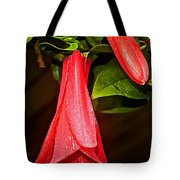 Chile's National Flower Copihue At Auto Museum In Moncopulli-chile  Tote Bag