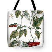 Chili Pepper, 1735 Tote Bag