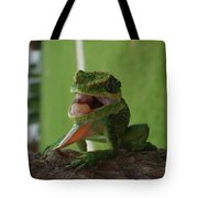 Chilling On Wood Tote Bag
