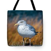 Chilling Seagull Tote Bag