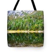 Chimney Pond Reflections 2 Tote Bag