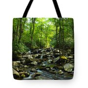 Chimney Tops Trail Tote Bag