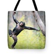 Chimp In Flight Tote Bag