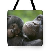 Chimpanzee Mother And Infant Tote Bag