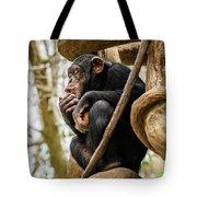 Chimpanzee, Nc Zoo Tote Bag