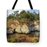China Cove, Point Lobos Tote Bag by Yair Karelic