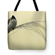 Chinese Bulbul Tote Bag