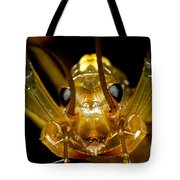 Chinese Cave House Centipede Tote Bag