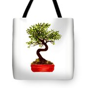 Chinese Elm Bonsai Tree Tote Bag
