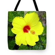 Chinese Hibiscus Tote Bag
