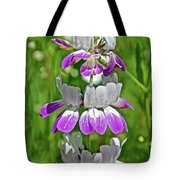 Chinese Houses On Harvard Street In Claremont, California   Tote Bag