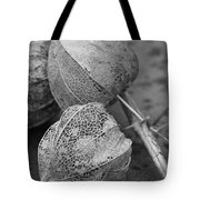 Chinese Lanterns In Black And White Tote Bag