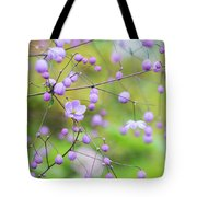 Chinese Meadow Rue Flowers Opening Tote Bag