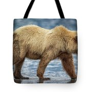 Chinitna Bay Brown Bear Tote Bag