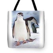 Chinstrap Penguins 2 Tote Bag