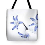 Chionodoxa - Glory Of The Snow Tote Bag