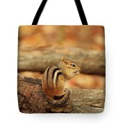 Chip On A Log Tote Bag
